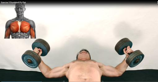 Personal Trainer Strength Training.