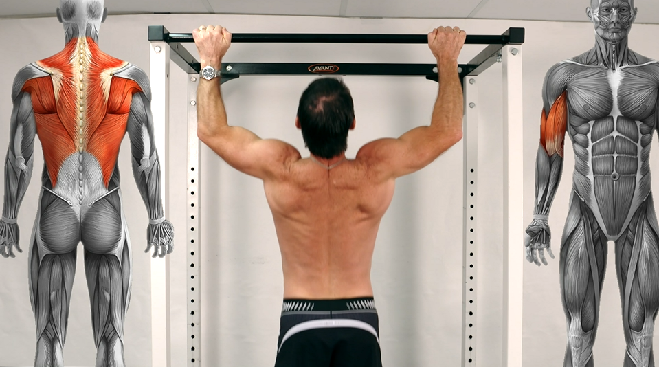 Back - Pull up - Motivating Health - Natural Therapies, Weight Loss ...